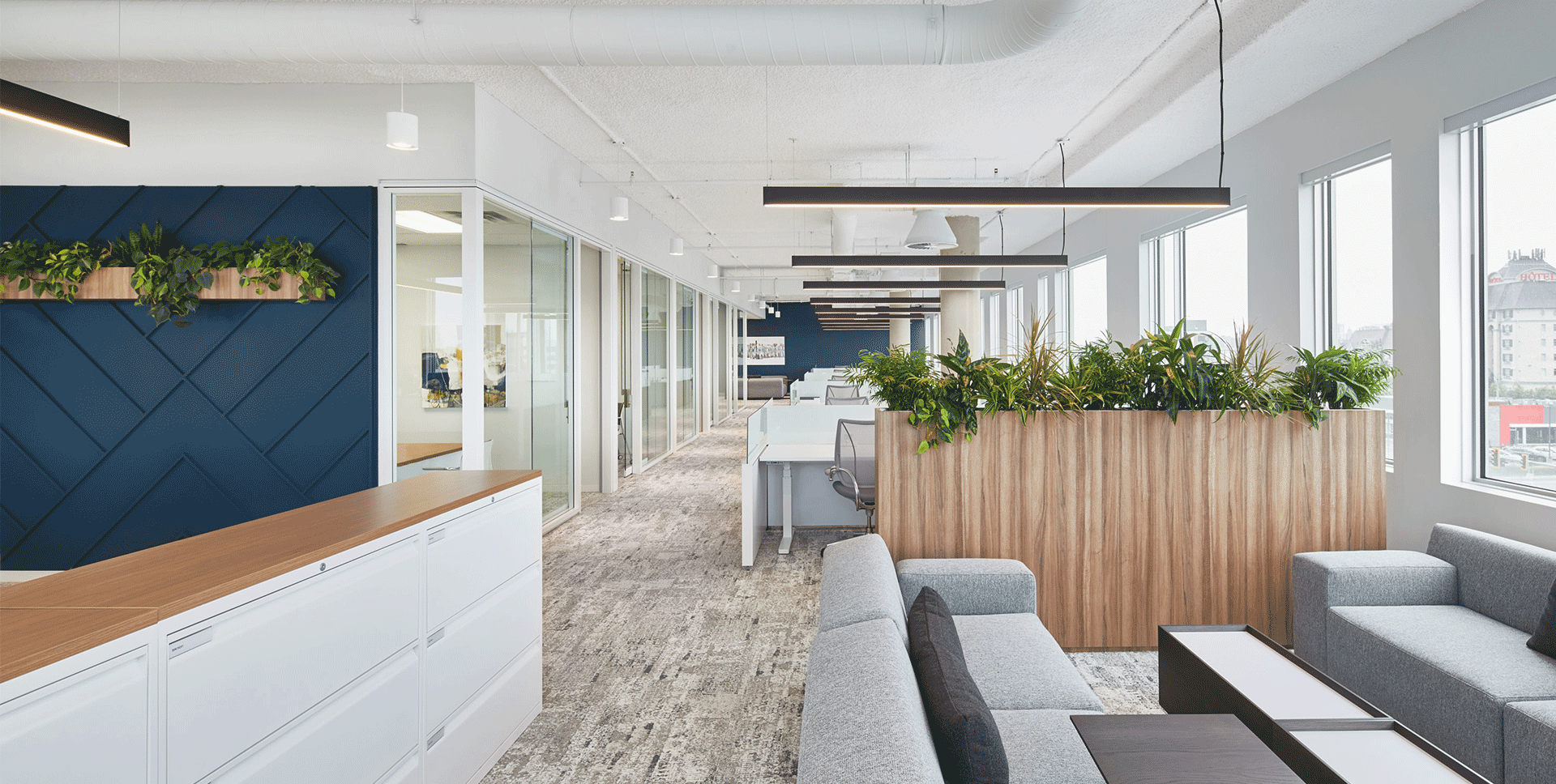 Plants in office at Fiera headquarters in Laval design by VAD